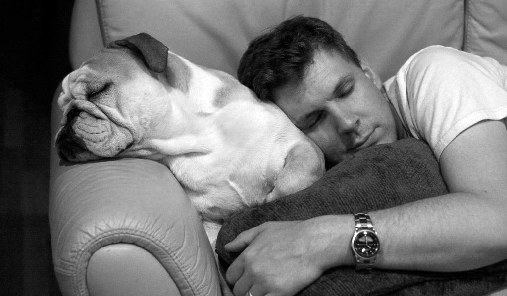 Man and dog sleeping on couch
